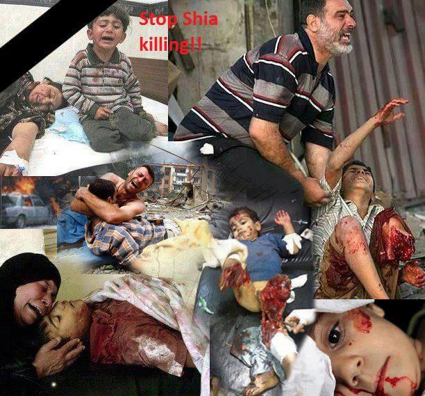 stop shia killing